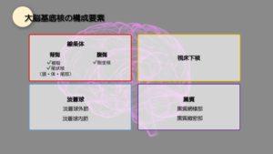 大脳基底核構成