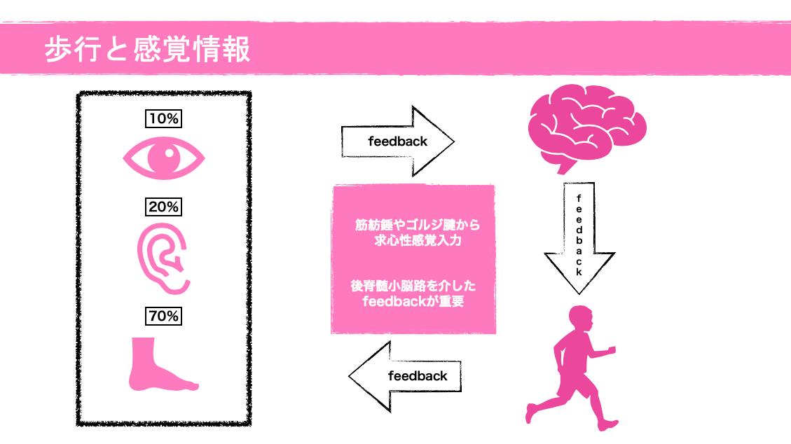 身体図式3