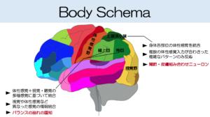 身体図式2