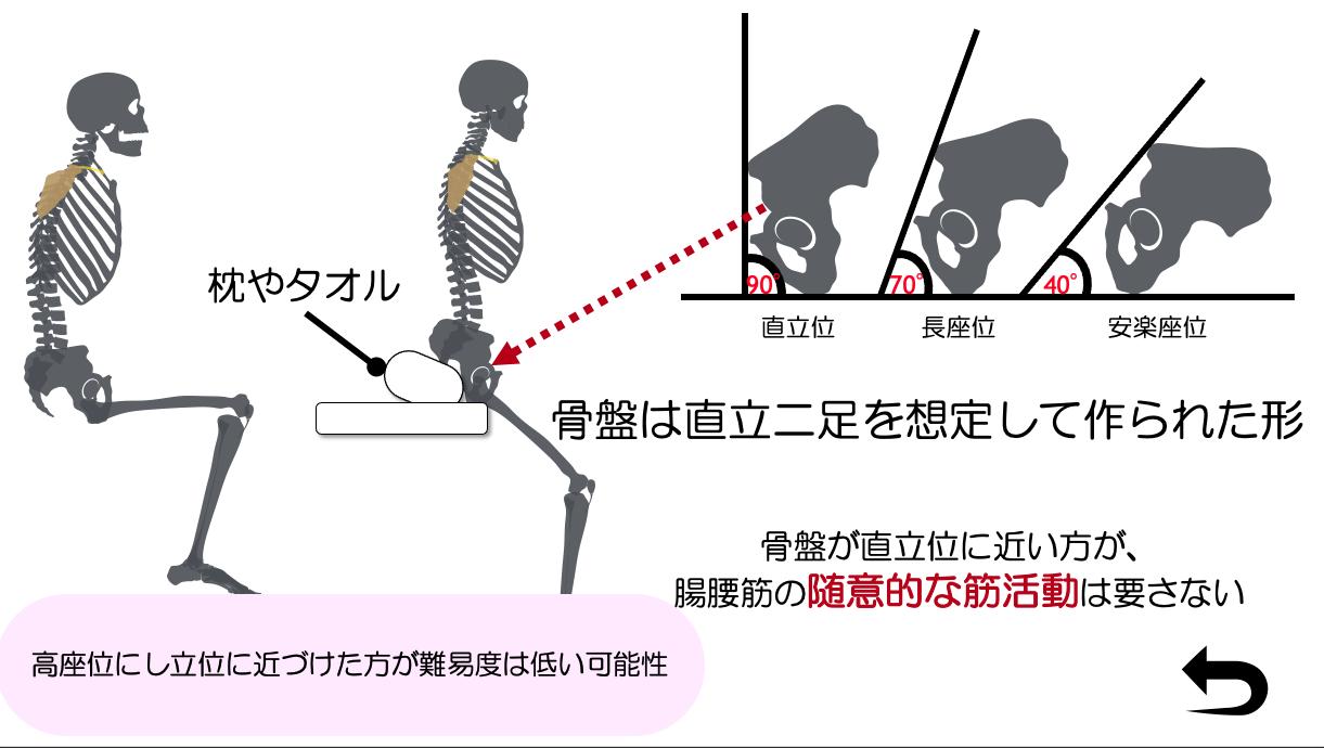 骨盤の傾きと姿勢